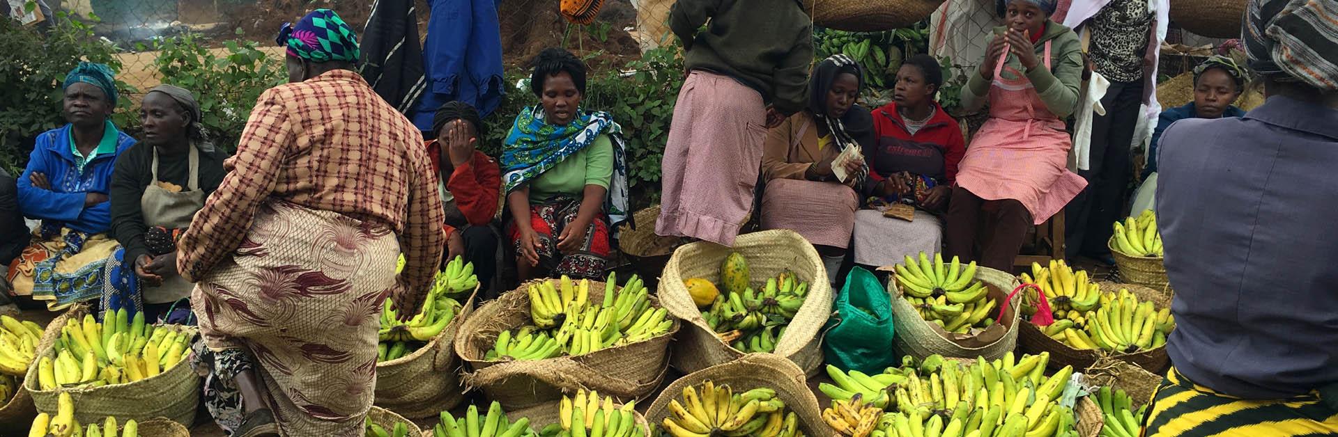 Eudaimonia promote sustainable economic growth and regeneration throughout Kenya